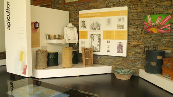 ekspozycja przedstawiająca historie pszczelarstwa